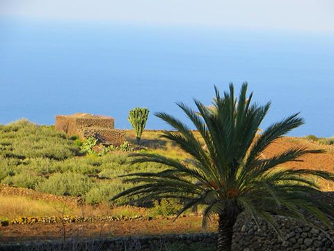 Pantelleria apripista di Expo 2015 Regione Sicilia